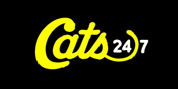 Pluto TV Cats 24/7